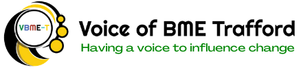 Voice of BME-T